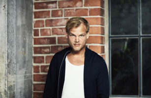 """FIRST EVER """"AVICII ARENA TOGETHER FOR A BETTER DAY"""" CONCERT IS DECEMBER 1!"""
